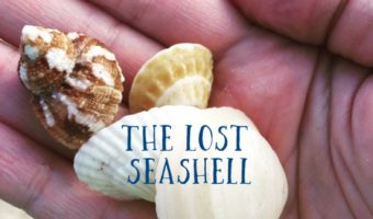 The Lost Seashell