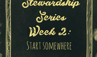 Stewardship Series Week 2: Start Somewhere